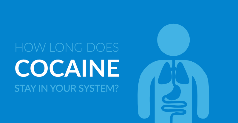 How Long Does Cocaine Stay in Your System (Urine, Blood & Saliva